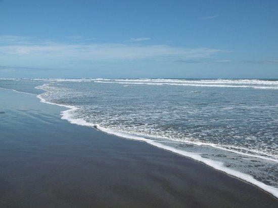 Foxton Beach - looking south