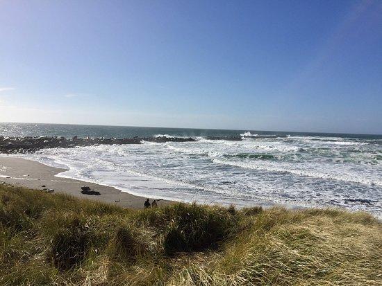 Ocean Shores, Ουάσιγκτον: photo0.jpg