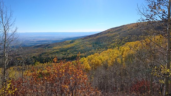 Near the top of Grand Mesa