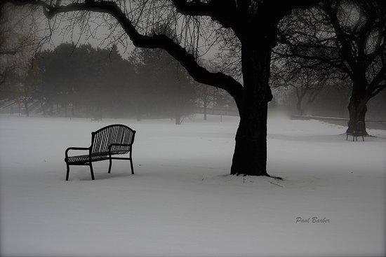 Brantford, Canadá: Winter in Lorne Park, still worth the visit.
