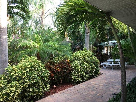 Redington Beach, FL: photo4.jpg