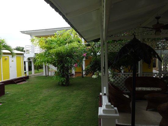 Hostal Casa Amarilla: Extérieur: une partie de jardin et de salon extérieur