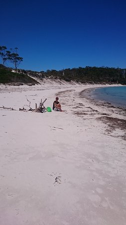 Tasmanien, Australien: Picnic time...there is camping available