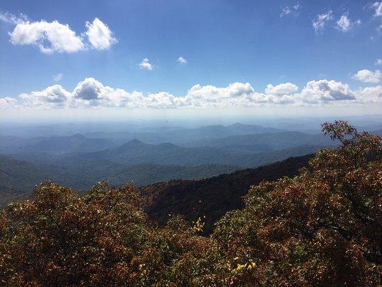 Bartram Trail: photo0.jpg
