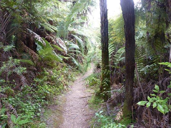 Pipiriki, Νέα Ζηλανδία: The Road to Nowhere