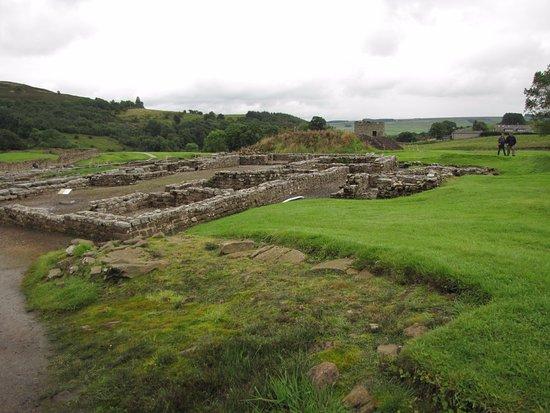 Хексхам, UK: Wide view of ruins at Vindolanda