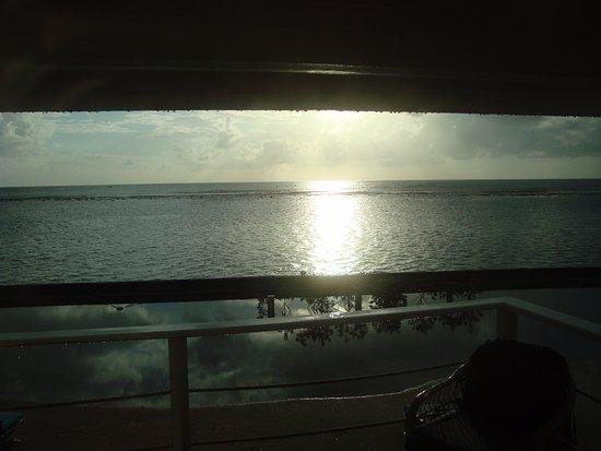 Turneffe Island Φωτογραφία