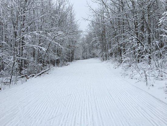American Birkebeiner Trail