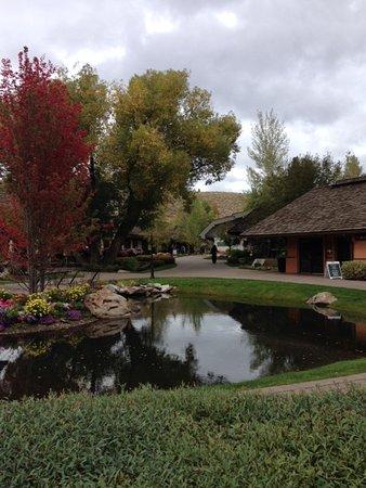 Sun Valley Lodge Area