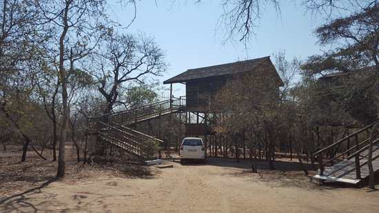 Foto de Pezulu Tree House Game Lodge