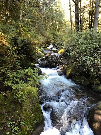 Gold Bar, WA: Scenic views on trail Wallace Falls