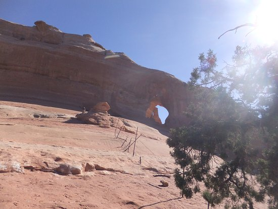 Looking Glass Arch