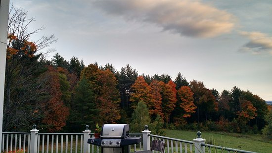 Montpellier, VT: View from the back porch/patio.