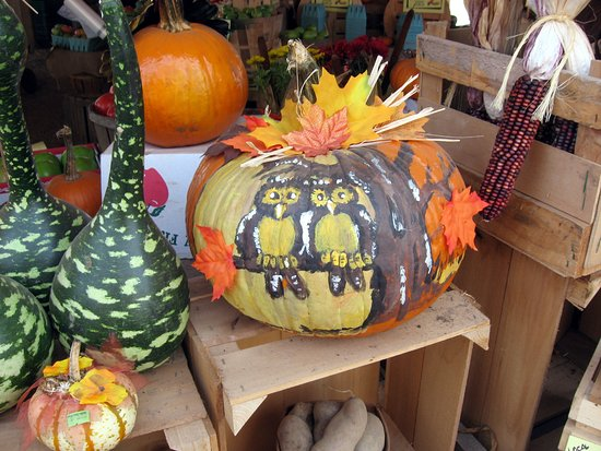 Bainbridge, NY: Pumpkins and Squash