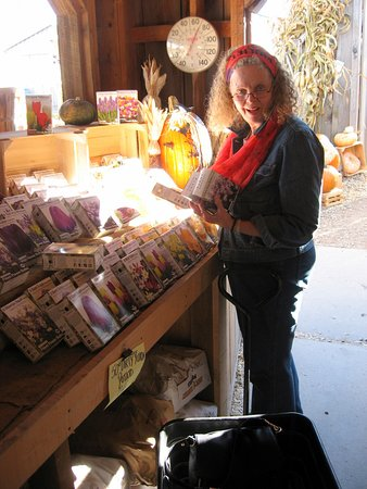 Bainbridge, NY: Seed packets