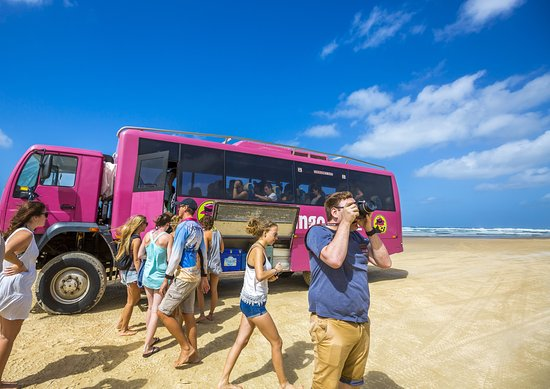 Cool Dingo Tours Fraser Island Pictures