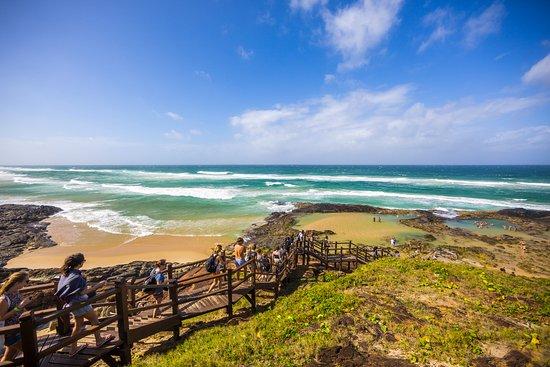 Fraser Island Explorer Tours Tripadvisor