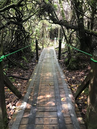 Poas Volcano National Park, كوستاريكا: photo8.jpg