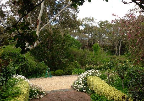 Strathalbyn, Australia: View from Garden Suite