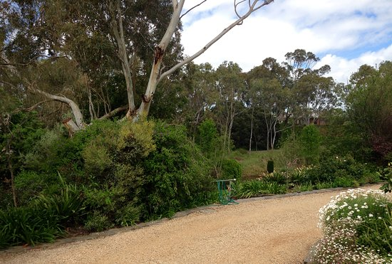 Strathalbyn, Australia: View from Stables Cottage