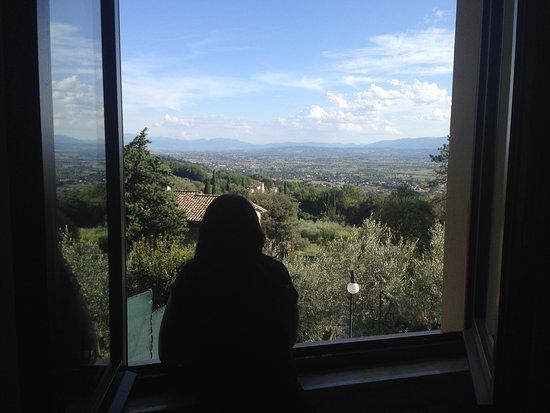 Camere da Ramaccia: Vista da janela do quarto