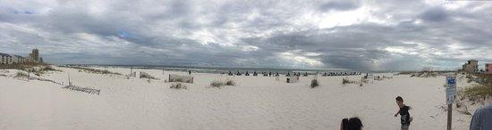 Palm Beach: photo1.jpg