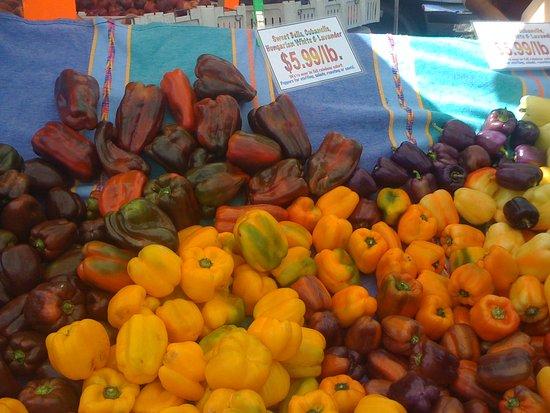 Marin County Farmers' Market--San Rafael: wonderful variety of peppers