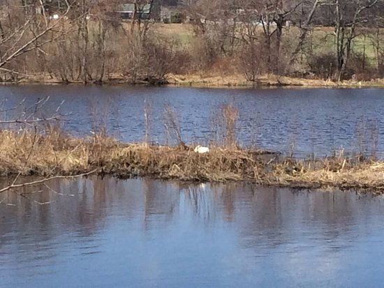 Taunton, MA: Views along the Three Mile River