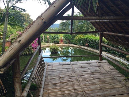 Мае-Ай, Таиланд: photo0.jpg