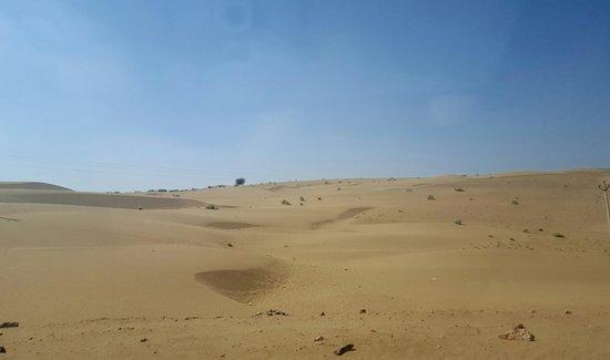 paseo en camello - Picture of Thar Desert, Rajasthan ...