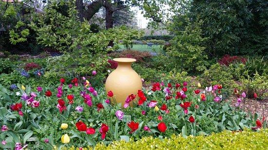 Waldorf Leura Gardens Resort: 20161004_175235_large.jpg