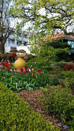 Waldorf Leura Gardens Resort: 20161004_173623_large.jpg