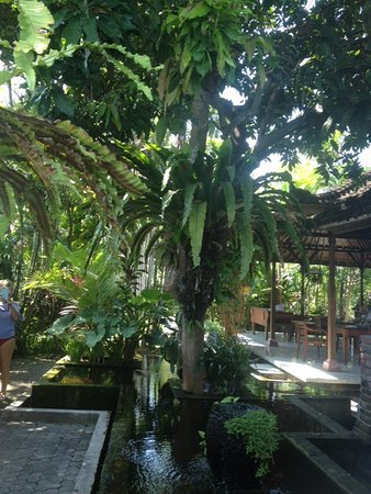 Bumi Ayu Bungalows: There is an outdoor dining area as well as indoor.