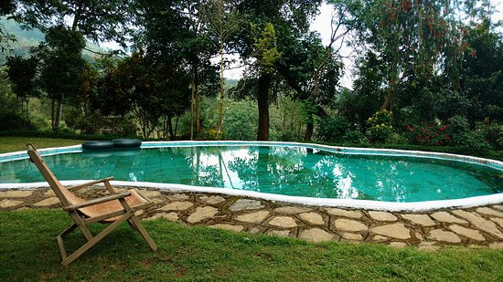 Amberina ooty lodge reviews photos rate comparison - Best hotels in ooty with swimming pool ...