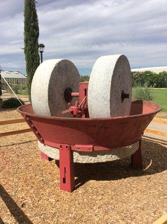 Queen Creek, AZ: Old olive grinder