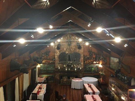 Zdjęcie Safari Lodge