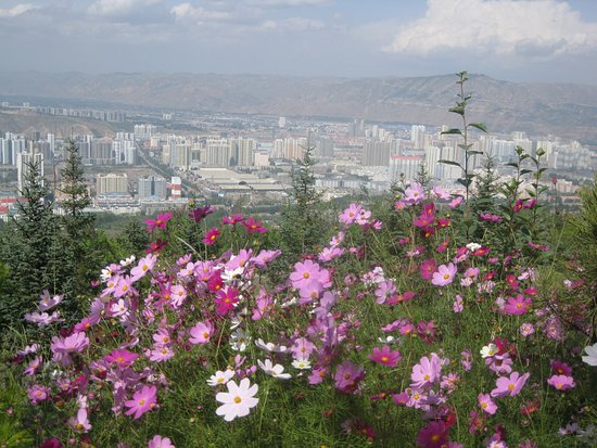Xining, China: You have a nice view of the city