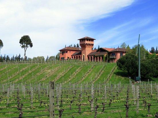 Μπλένχαϊμ, Νέα Ζηλανδία: Highfield Terravin