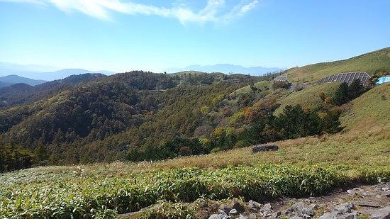 Kirigamine Fujimidai: 紅葉にはまだ早かった(残念)
