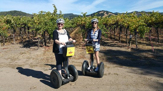 Sonoma Segway: Riding near vineyards.
