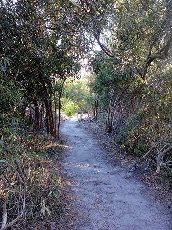 Greyton, Sudáfrica: IMG_20161017_080316_large.jpg