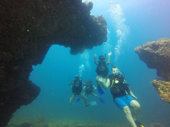 Vallarta Undersea Foto