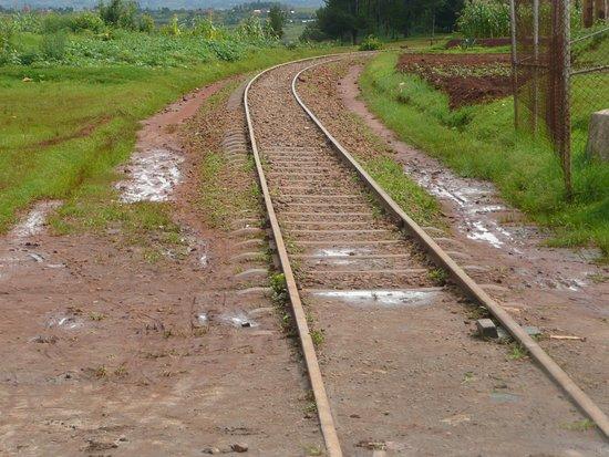 Madarail: ein Bahnübergang an der Strecke