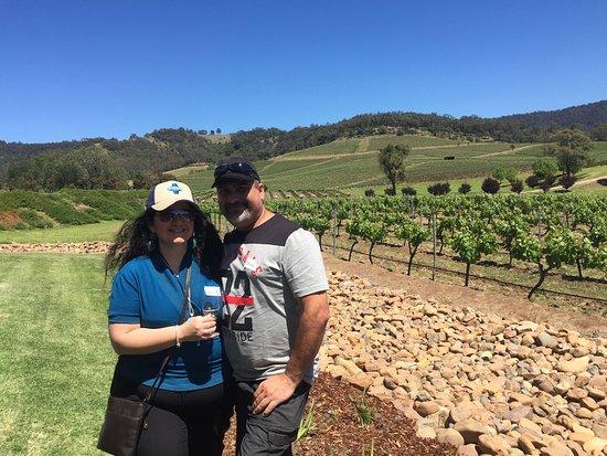 Ivanhoe Wines: photo2.jpg