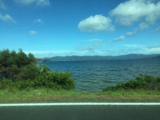 布魯尼島照片