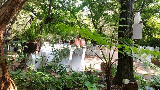 Foxwood House: Our wedding reception area under the trees.