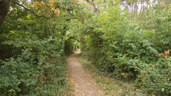 West Wittering, UK: The path between wittering and ichenor