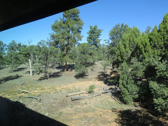 Yavapai Lodge: View from our room in the East block