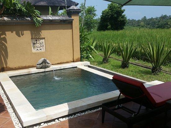 Villa Semana: Private pool