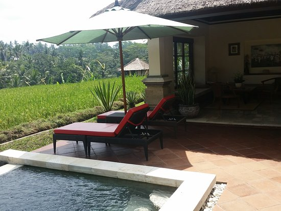 Villa Semana: Private pool and outdoor living area